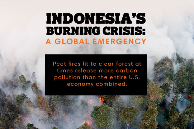 Indonesia's Burning Crisis: A Global Emergency. Peat fires lit to clear forest at times release more carbon pollution than the entire U.S. economy combined.